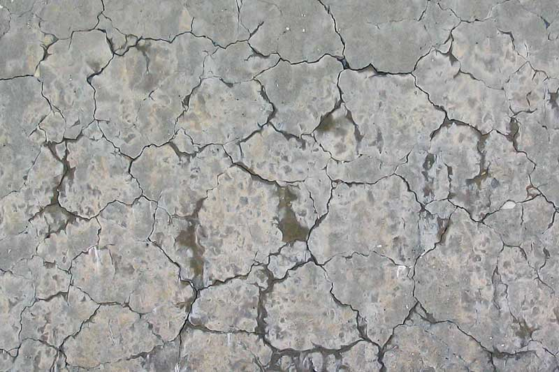 Cracking caused by Alkali Aggregate Reactivity